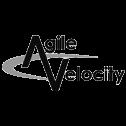 Blackhawk | AgileVelocityLogo | Austin Digital Marketing Agency