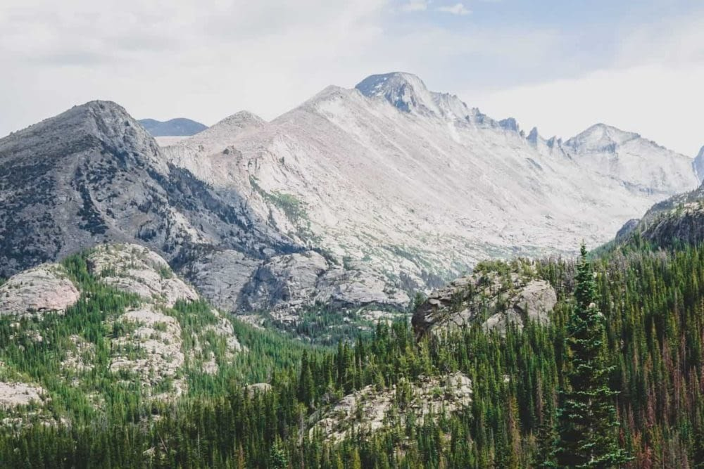 Rocky Mountain range and evergreen trees in Colorado