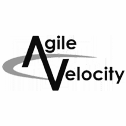 Blackhawk | AgileVelocityLogo | Austin Digital Marketing Agency