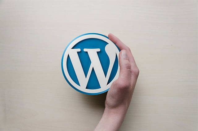 A hand holding the WordPress logo